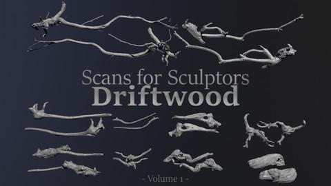 Driftwood - Scans for Sculptors - Volume 1