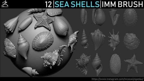Zbrush - Seashells IMM Brush