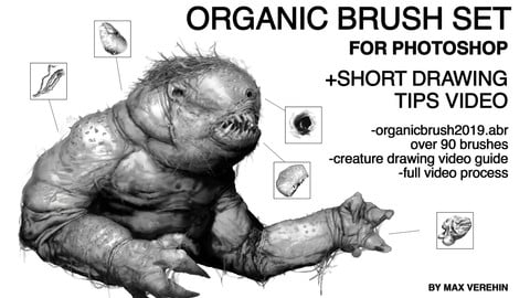ORGANIC BRUSH SET