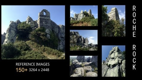 150+ Reference Images: Roche Rock