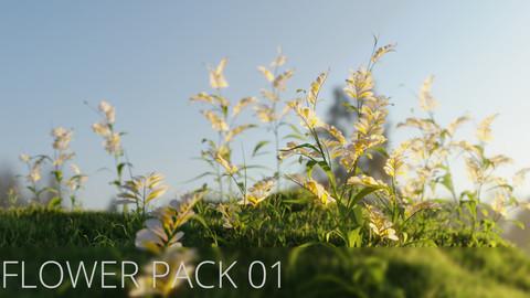 3D Flower Pack 01