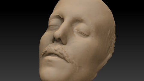 Death mask of Sigge Wulff 270mm