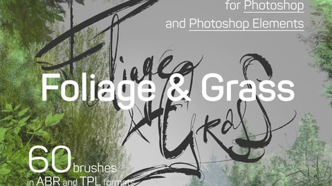 60 Foliage, Grass and Moss Photoshop brush presets. ABR and TPL formats