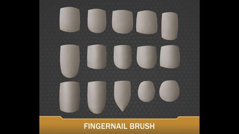 Fingernail Insert Brush - 15 Different Nail Options!