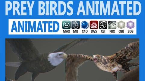 Pack – Prey Birds Animated