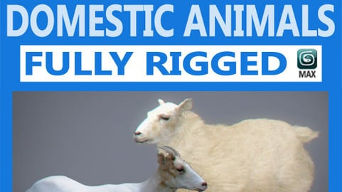 Pack – Domestic Animals Rigged