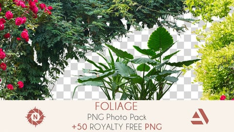 PNG Photo Pack: Foliage