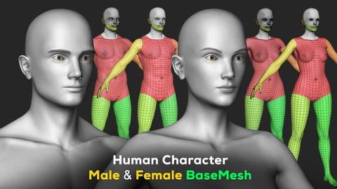 Human Character - Female and Male Basemesh Pack - Woman and Man