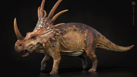 STYRACOSAURUS-Model-and-Textures-Damien-Guimoneau