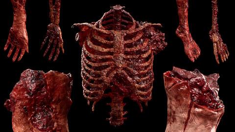 Gore & Horror Props: Vol.1