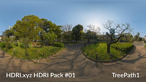 Tree Path #01 - 16K 32bit HDRI Spherical Panorama (from Pack #1)