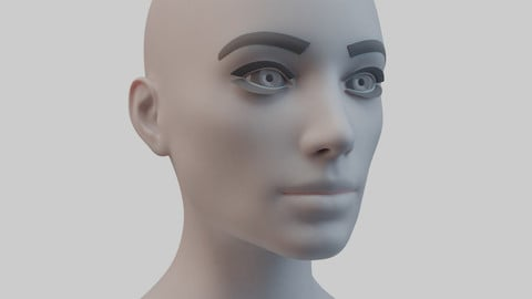 Female Base Mesh Single UV