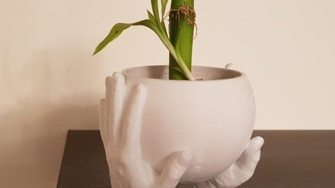 Carrying Hands plant pot
