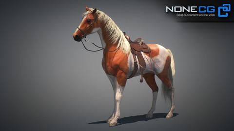 Horses Maya v3