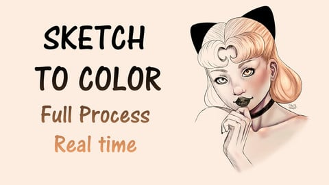 Sketch to Color Illustration Process