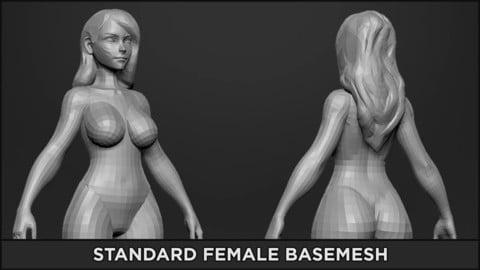 BASEMESH - Standard Female