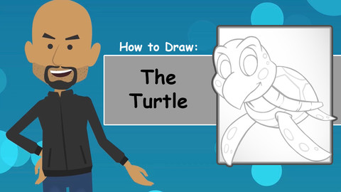 How To Draw The Turtle