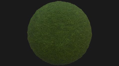 Grass Pbr texture