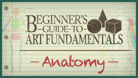 Beginner's Guide to Art Fundamentals - Episode 2 - Anatomy