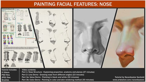 Painting facial features: Nose