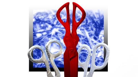 Nabi's scissor