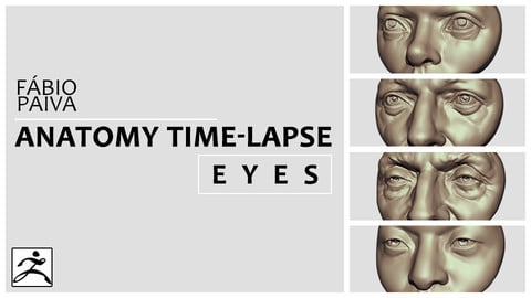 Anatomy Time-Lapse: Eyes