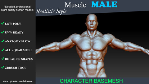 Low poly Basemesh Muscle Male 01