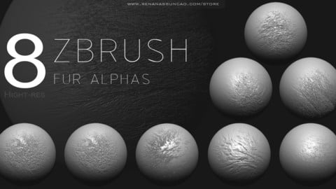ZBRUSH - 2K FUR ALPHA PACK