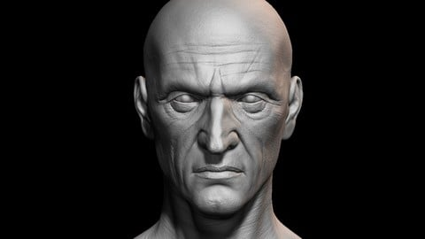 High detailed old guy face with UV and low poly Low-poly 3D model
