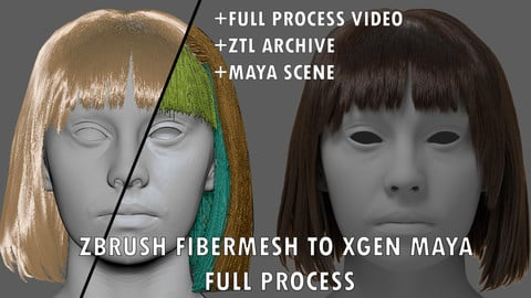 HAIR FIBERMESH TO XGEN WORKFLOW FULL PROCESS + MAYA AND ZBRUSH GROOM FILES