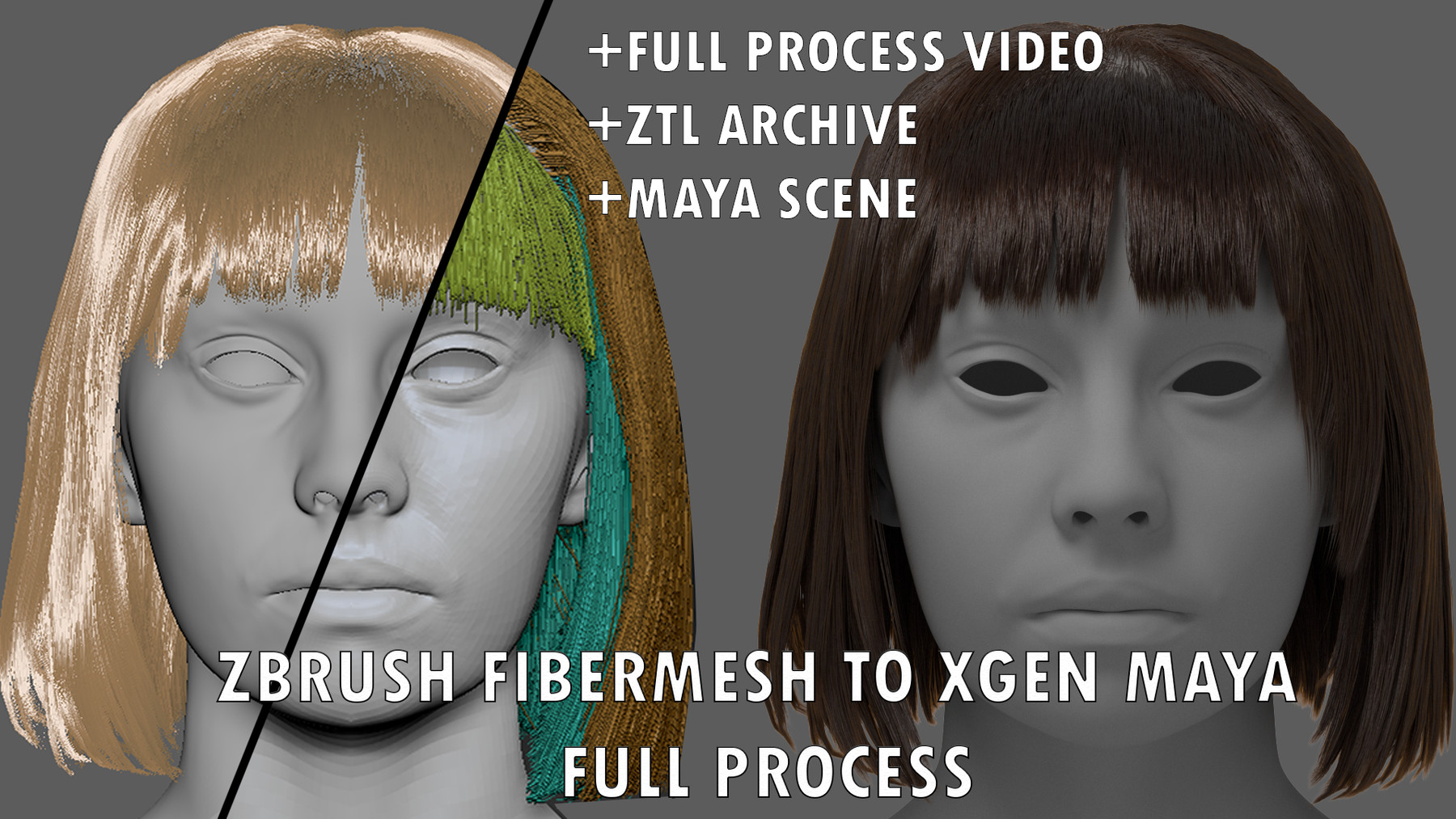 FIBERMESH TO XGEN WORKFLOW FULL PROCESS + MAYA AND ZBRUSH GROOM FILES by  Alberto L
