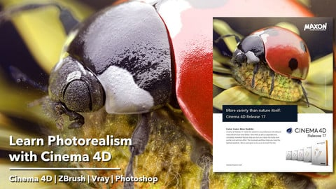 Learn Photorealism with Cinema 4D, Vray4C4D, ZBrush and Photoshop - The Ladybug Journey project