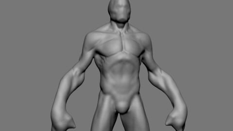 Creature Body Form