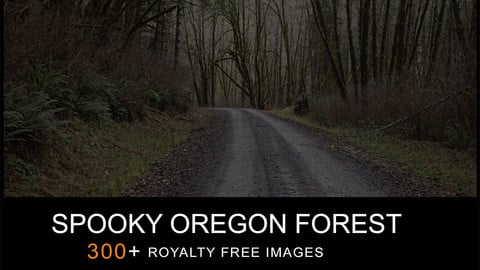 REF PACK SPOOKY OREGON FOREST PHOTO PACK