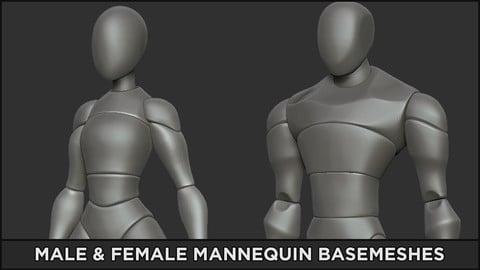 BASEMESH - Male / Female Mannequins