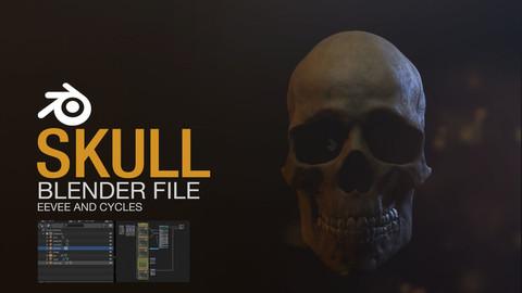 Skull - Blender