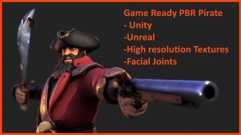 Pirate Captain - Stylised Skinned PBR Character