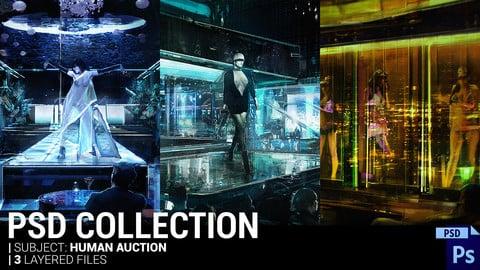 PSD Collection | Human Auction