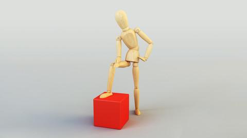 Wooden Dummy Doll 3D Model