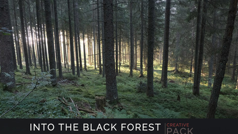 Into the Black Forest CREATIVE PACK