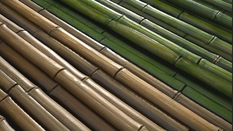 Bamboo Stick Tutorial ( Substance Designer Material)