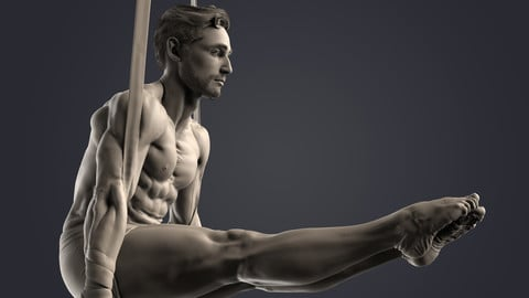 Anatomy Sculpt - Male 3
