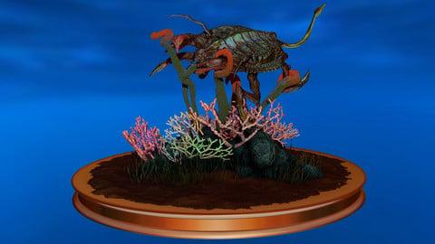 Aquatic Creature Diorama