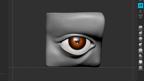 Eye Setup_Base