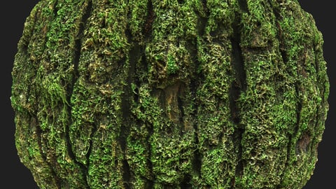 Mossy Tree Bark Material