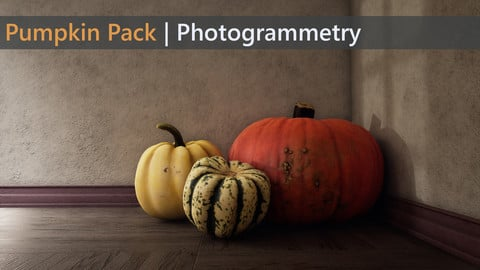 Pumpkin Pack | Photogrammetry