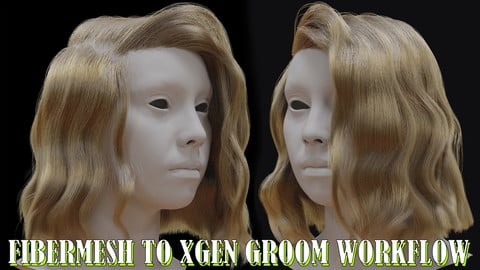 Fibermesh Hair to Xgen workflow tutorial (Women Groom) + Maya scene
