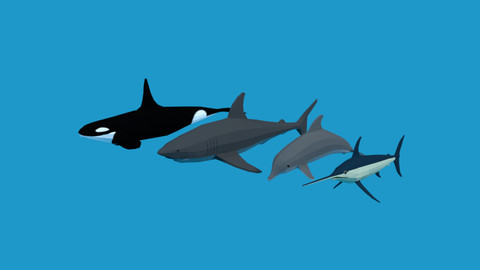 Low Poly Fish Collection