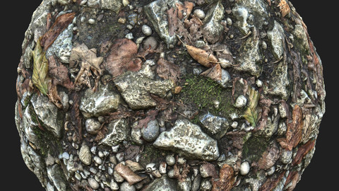 Forest Ground with Small Stones and Leaves Material Pack