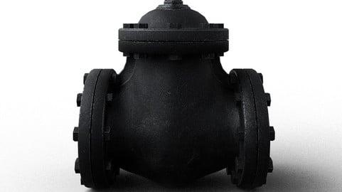 Big pipe check valve